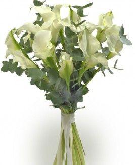 Каллы цветы купить в уфе где купить семена розы